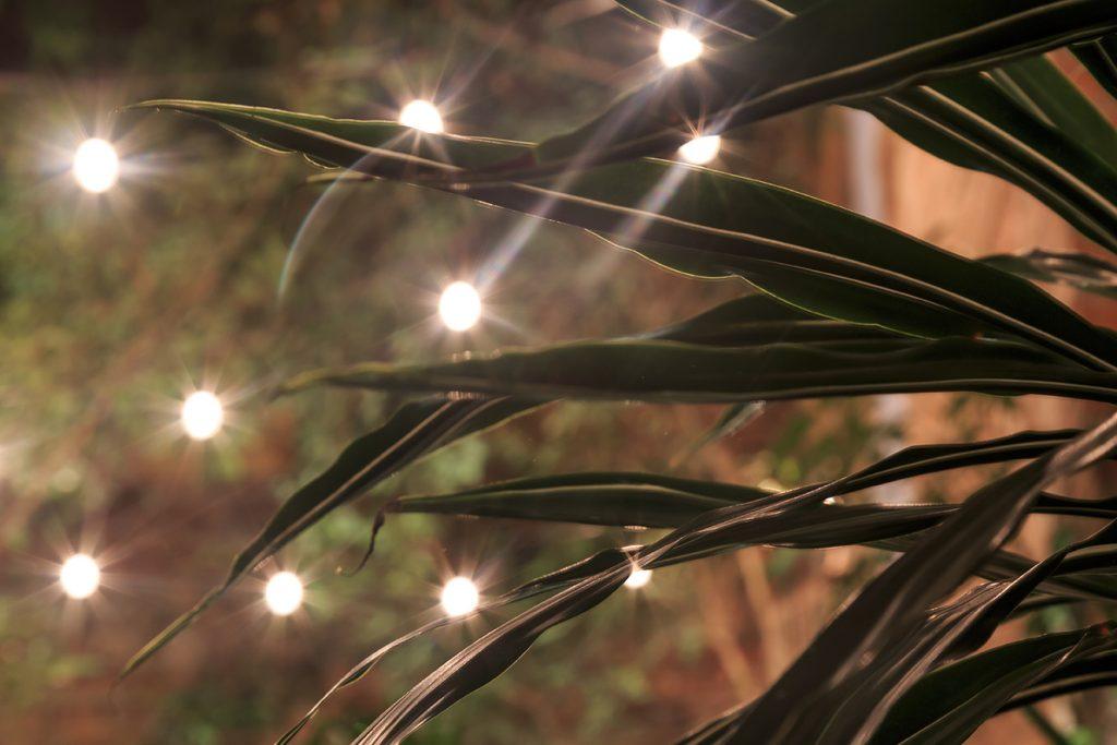 Iluminacion Paola RGB40
